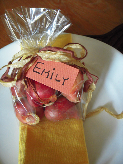 Autumn Dinner Party Favors in Clear Cello Bag