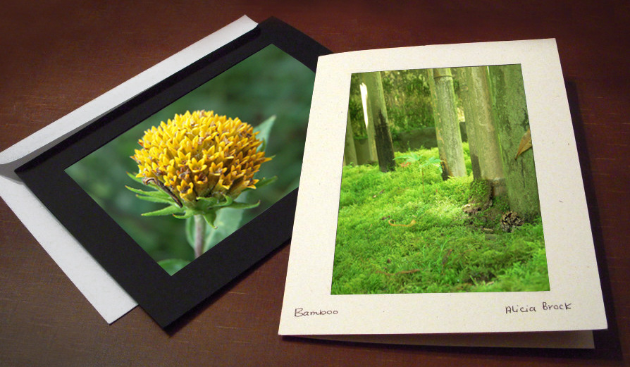 Photo Frame Cards for Nature Photography